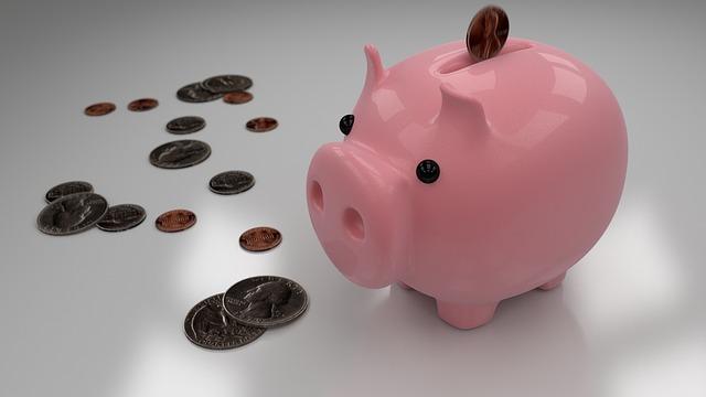 prasátko na úspory