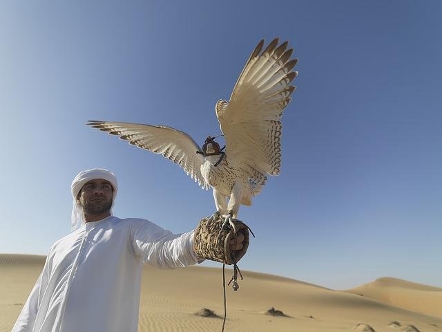 ochočený pták