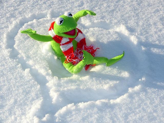 žába ve sněhu