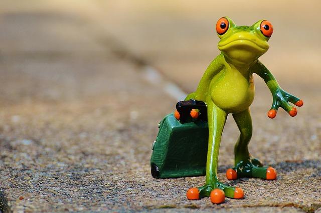 žába s kufrem