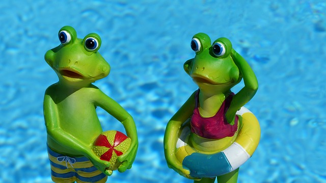 žáby v bazénu